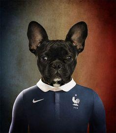 Dogs of World Cup Brazil 2014 – Fubiz™