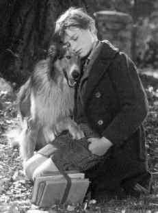 Lassie Come Home--i cry everytime i watch this movie...probably didnt help that the last time i watched it, i had just had to put my sheltie down...