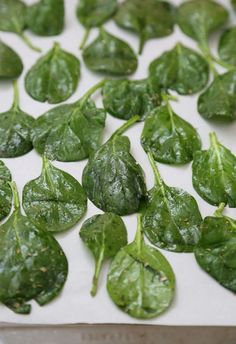 SPINACH CHIPS: 2 large handfuls of spinach, 1 Tbsp olive oil, 1/2 Tbsp Italian herb seasoning, 1/8 tsp sea salt. Bake at 350 for 9-12 minutes..