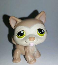 Littlest Pet Shop Dog Tan Husky Green Eyes #358 Preowned LPS in Toys & Hobbies, Preschool Toys & Pretend Play, Littlest Pet Shop | eBay