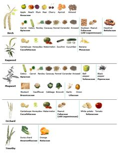 Oral Allergy Syndrome Chart