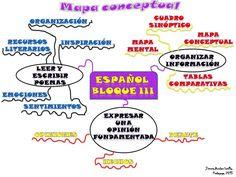 Información expuesta en mapa conceptual
