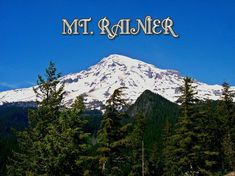 A coffee mug featuring a photo of Mt. Rainier in Washington state. Travel Bugs, Washington State, Mount Rainier, Coffee Mugs, Mountains, Nature, Photography, Outdoors, Image