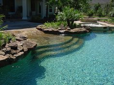 A walk in pool coming off the patio with water plant beds on either side.