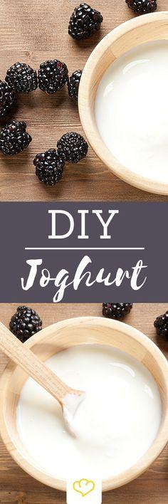 Joghurt ist gesund! Doch nicht alle Joghurtsorten aus dem Kühlregal haben diese tolle Wirkung auf uns. Gerade der Zuckergehalt einiger Produkte kann bedenklich sein. Hinzukommt das Wirrwarr an Zusatzstoffen und unterschiedlicher Formulierungen auf Etiketten. Wer also Gewissheit haben möchte, was tatsächlich im Joghurt enthalten ist, der macht ihn am besten selbst. Und so geht's: