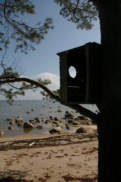Birds nest box, Estonia