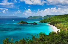 Trunk Beach, St. John Island, Virgin Islands National Park, United States Virgin Islands - No Passport Needed #honeymoonvirginislands #honeymoonpackagesvirginislands