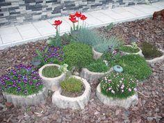 Vaša záhrada