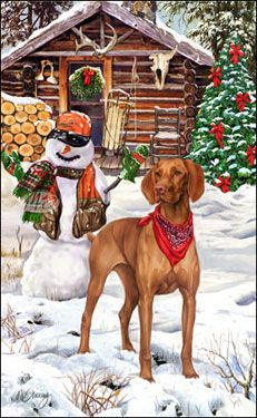 """Vizsla Christmas Holiday Cards are 8 1/2"""" x 5 1/2"""" and come in packages of 12 cards. One design per package. All designs include envelopes, your personal message, and choice of greeting. Select the greeting of your choice from the drop-down menu above. Add your personal message to the Comments box during checkout."""