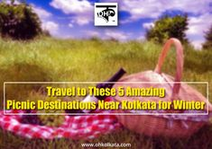 West Bengal, Kolkata, Picnic, Amazing, Travel, Voyage, Trips, Viajes, Destinations
