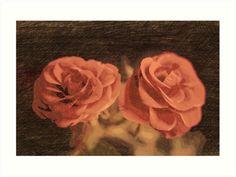 A #pair of #roses in #sketch3  #Kunstdrucke von #pASob-dESIGN | @Redbubble http://www.redbubble.com/de/people/pasob-design/works/17439141-a-pair-of-roses-in-sketch3?grid_pos=40&p=art-print