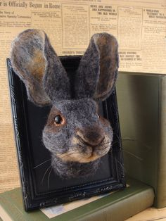 3D Framed Needle-Felted Hare. How cute - would be adorable to have all sorts of woodland animals like this on a wall like family portraits.