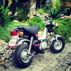 Yamaha Chappy - Casablanca Maroc
