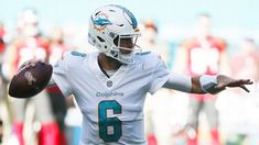 Dolphins' Cutler suffers concussion vs. Bucs #FansnStars