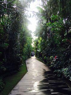 Deck, Ametis Villas, Canggu, Bali