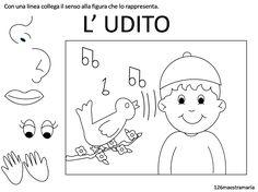 udito3.png (1512×1131)