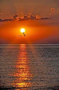 Welcome to the community of fans Pictures nature Nature Pictures, Cool Pictures, Beautiful Pictures, Amazing Sunsets, Amazing Nature, Beautiful World, Beautiful Places, Image Nature, Beautiful Sunrise