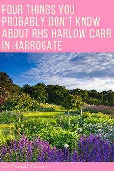 RHS Harlow Carr Gardens in Harrogate