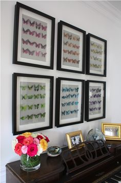 My Very Own Butterfly Collection. | Kiki's List  http://kikis-list.com/2011/06/21/my-very-own-butterfly-collection/
