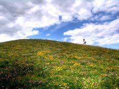 Northala_05_photo « Landscape Architecture Works | Landezine