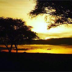 Be More  Prachtig.. Om stil van de worden.. Eline van Roon heeft deze foto gemaakt in Murchison falls national park in Uganda  Heb jij ook zo'n prachtig plaatje van je reis? Tag 'm dan met #vrijwilligerswerkbemore!