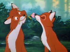 .Fox and hound