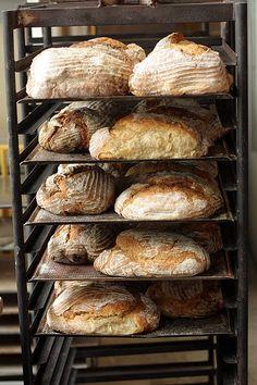 If I ever go back to Stockholm... bread rack at Rosendals Trädgård by David Lebovitz, via Flickr