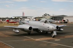 Temora Aviation Museum's Gloster Meteor at November 2013 Temora Warbirds Downunder airshow, Australia.