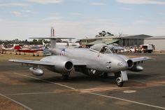 Temora Aviation Museum's Gloster Meteor at November 2013 Temora Warbirds Downunder airshow, Australia.