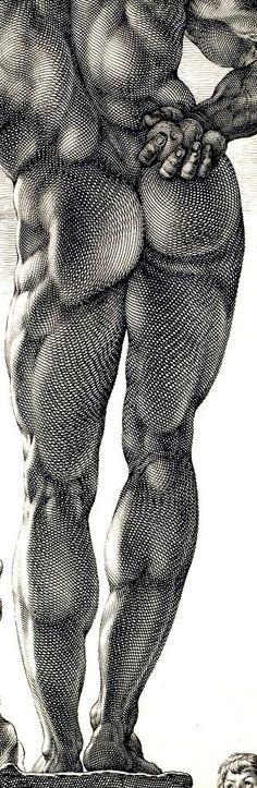 Hendrick Goltzius  Farnese Hercules (detail) c. 1592 41.8 x 30.4 cm  Metropolitan Museum of Art