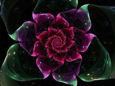 Rose Digital Art - Royal Rose by Diana Coatu