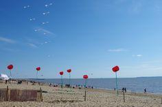Chatelaillon, le festival des cerfs volants sur la plage