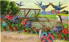 Italian Easter/Spring Vintage Postcards - tons of neat images!