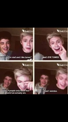One direction Niall HORAN and Liam Payne? No, I think you mean me and my best friend One Direction Humor, One Direction Pictures, I Love One Direction, 0ne Direction, James Horan, Liam Payne, Really Funny, Boy Bands, Just In Case