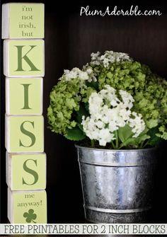 I'm not Irish Kiss Me Printable Blocks Craft