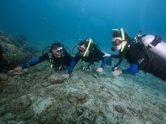 Scuba see, scuba do. (Beginner's Scuba Dive shore excursion - Aruba)