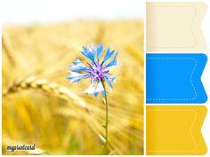 Eine Hochzeitsfarbe, die voll im Trend 2016 liegt, ist Kornblumenlau. Dieses Moodboard inspiriert Euch zu Eurem Farbkonzept für die Sommerhochzeit mit saisonalen Sommerblumen. Hier die Kornblume.   #royalblue #blau #kornblumenblau #hochzeitsfarben #wedding #hochzeit #farbkonzept #moodboard #weddingcake #weddingstationary #apero #sektempfang #hochzeitstorte #brautstrauß #blumendekoration #farben
