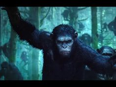 Dawn Of The Planet Of The Apes Official Trailer (HD) July 11, 2014