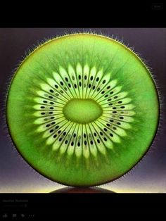 Fractal symmetry in nature, Kiwi? (don't know if it is truly a symmetrical fractal, but it is beautiful. :) I like it because of the circle in the kiwi. Fractals In Nature, Art Et Nature, Nature Hunt, Nature Photos, Patterns In Nature, Textures Patterns, Fractal Patterns, Nature Pattern, Art Patterns