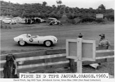 David Finch, Jaguar D Type, Gnoo Blas, New South Wales, Australia 1960