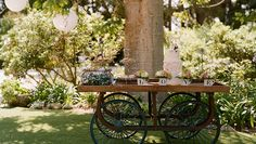 A great dessert display for a garden vow renewal!
