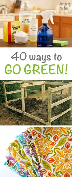 Go green at home with these easy tips!