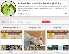 Animal Rescue of the Rockies Exotic Pets, Non Profit, Animal Rescue, The Fosters, Dog Cat, Adoption, Organization, Activities, Motivation