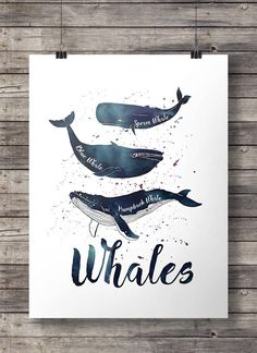 Wale Aquarell nautische Drucken - Printable Wandkunst INSTANT DOWNLOAD alle South Pacific Art Prints - 2 kaufen 1 gratis! Gutschein-Code FREEBIE 16