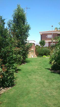 Jardín particular en Muchamiel