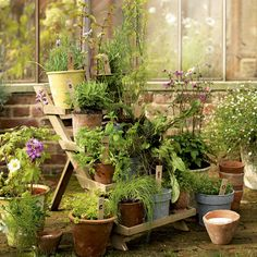 Perfect if you have a little potted herb garden