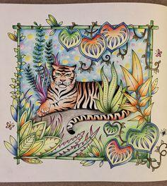 Магические джунгли #magical jungle