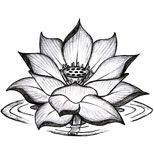 lotus tattoo design this in color would be beautiful .. with the hamsa coming out the middle!! I even like the water too!! pinks purps and blues