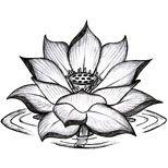 Black lotus tattoo design