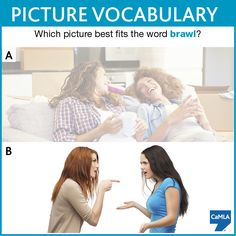 The correct answer is B. A brawl is a noisy argument or quarrel. The people in the answer look like they are arguing about something, don't they? Compare them to the people in the other photo, who look relaxed and like they are having a good time.